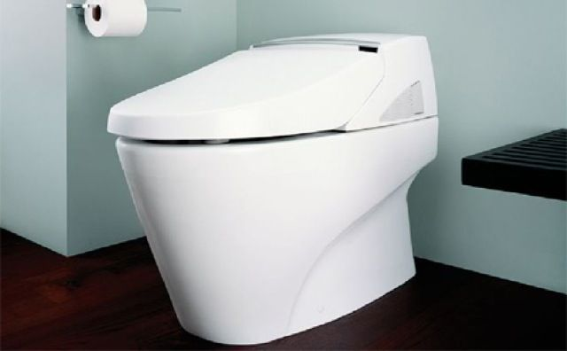 Awe Inspiring Most Expensive Toilet Seat Most Expensive Toilets Pure Pabps2019 Chair Design Images Pabps2019Com