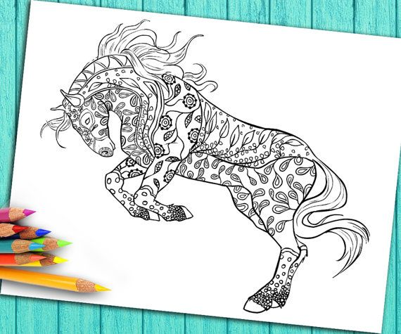 Coloring Book Etsy : Adult coloring book page from for adults horse
