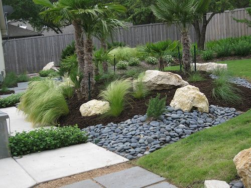 Design Focal Point W Limestone Boulders Mexican Beach Pebbles Mexican Feather Grass Hardy Palms Modern Landscaping Grasses Landscaping Landscaping With Rocks