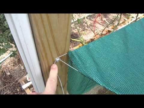 Shade Cloth Save 50 On Vegetable Garden You