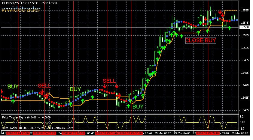 Forex trading australia training
