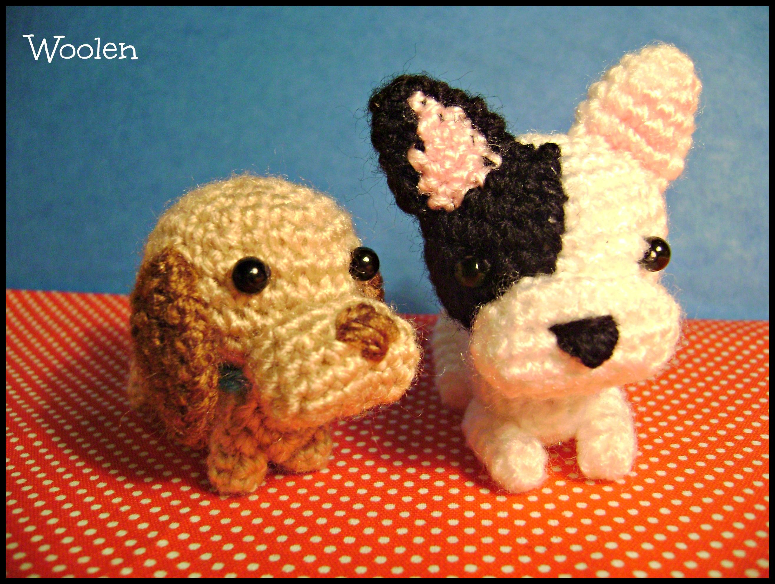 Dachshund e Bulldog francês