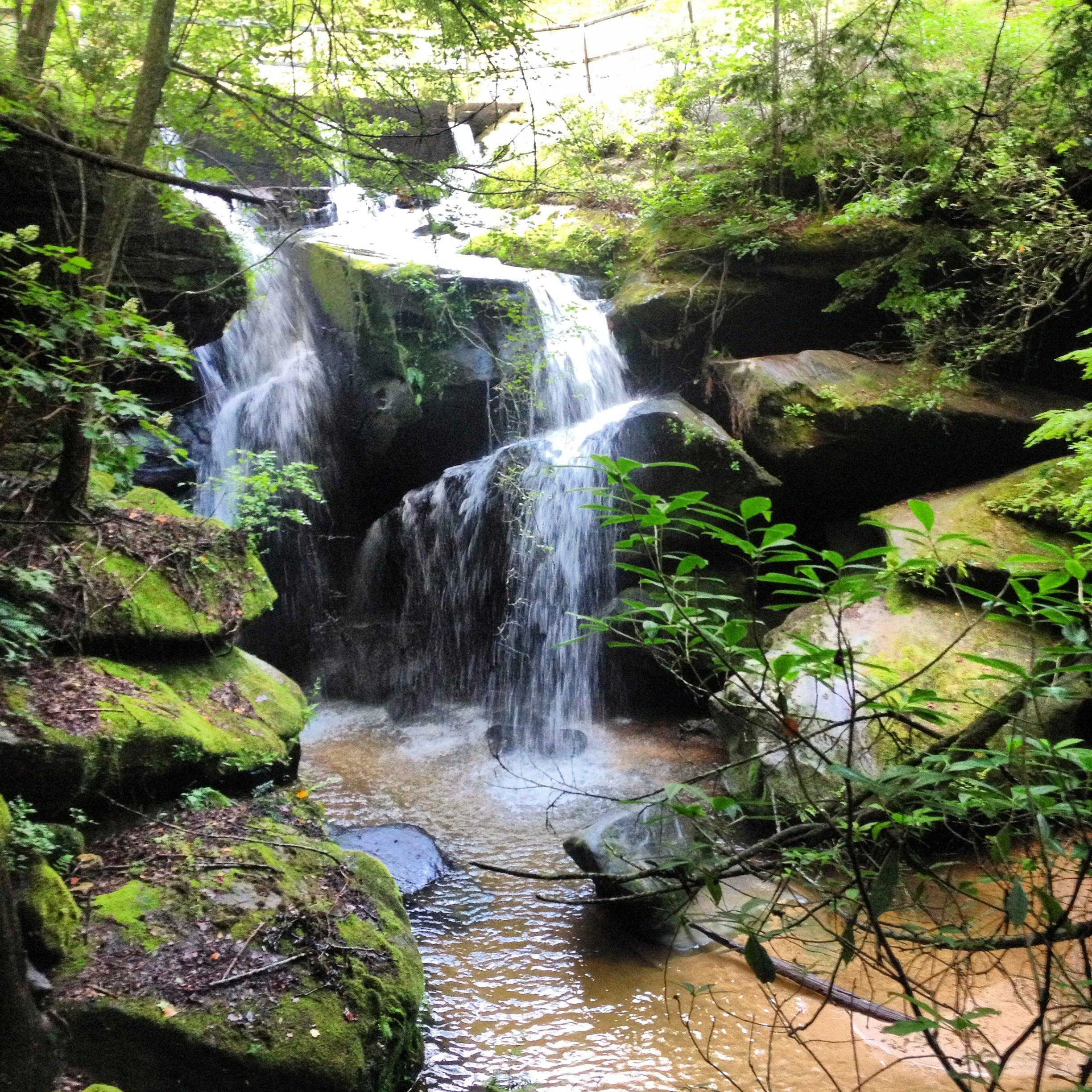 Dismals Canyon - Phil Campbell, AL: one of the few places where dismalites can be found, and where the Chickasaw Indians were held captive before embarking on the Trail of Tears.