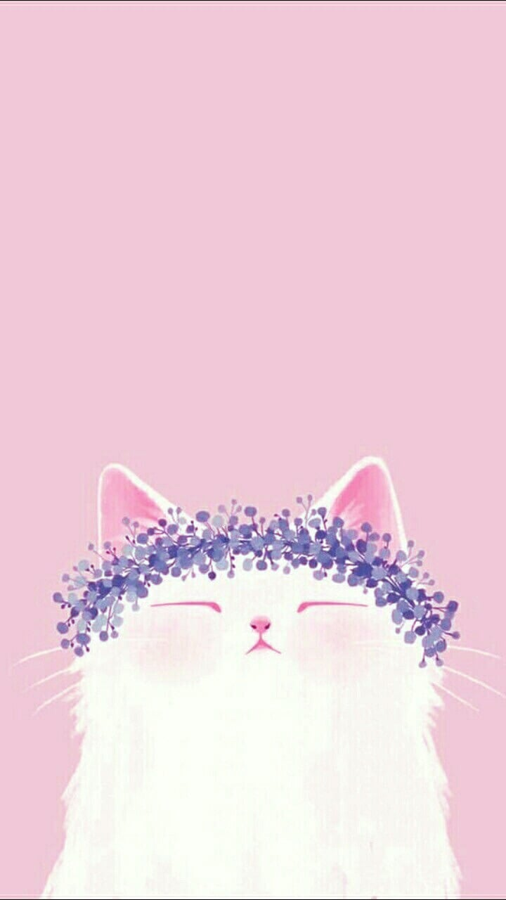 Image about cat in lockscreen. by Queen. on We Heart It