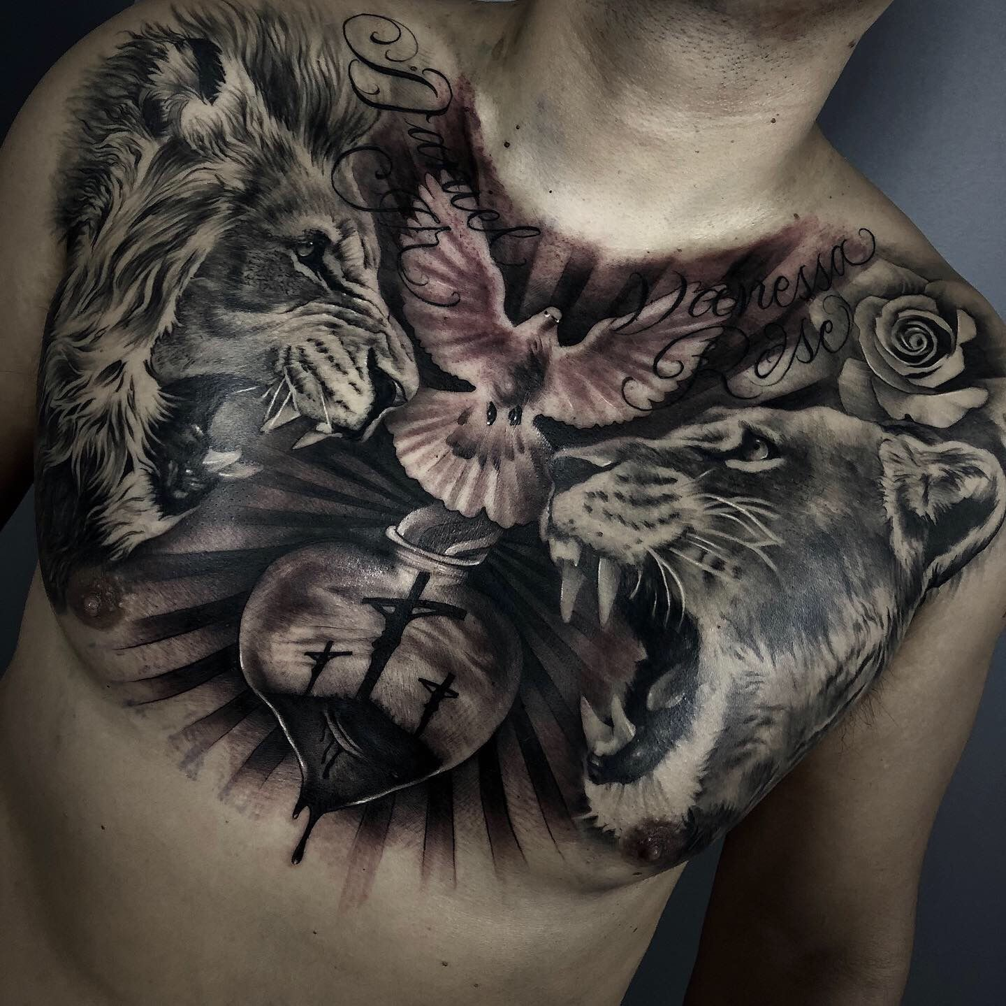 Chest tattoo lion tattoo lioness tattoo (With images