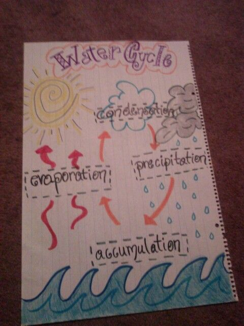 Water cycle diagram also sciences pinterest anchor charts rh