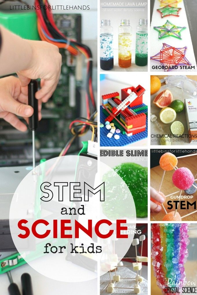 Fun Science Experiments For Kids Stem for kids, Cool