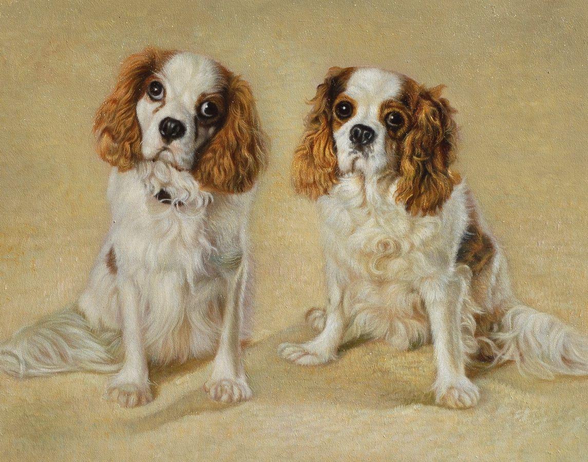 hondenportretten schilderen - Google zoeken