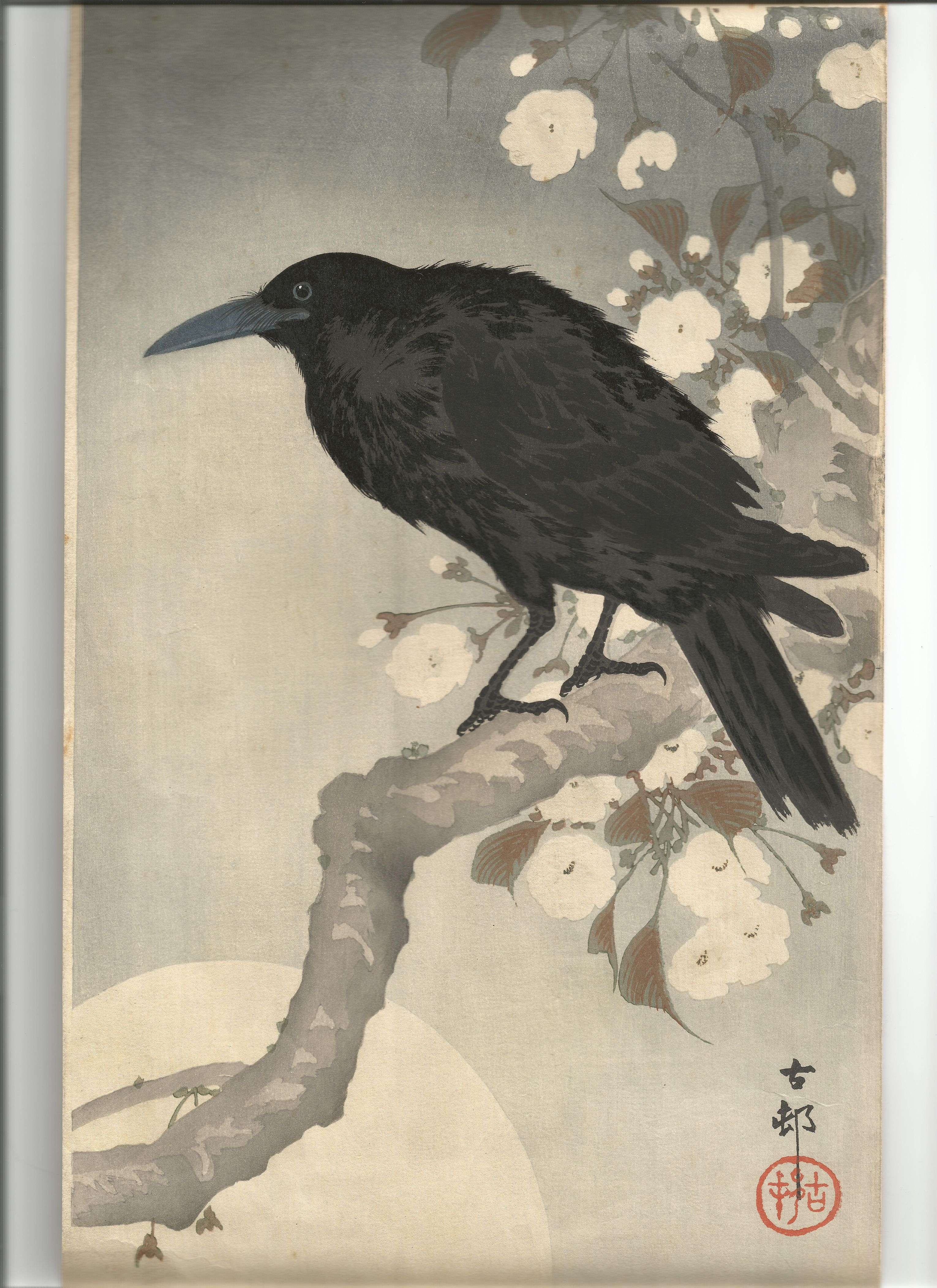 Japanese Reproduction Woodblock Print 6 by Ohara Koson on Cream Parchment Paper.