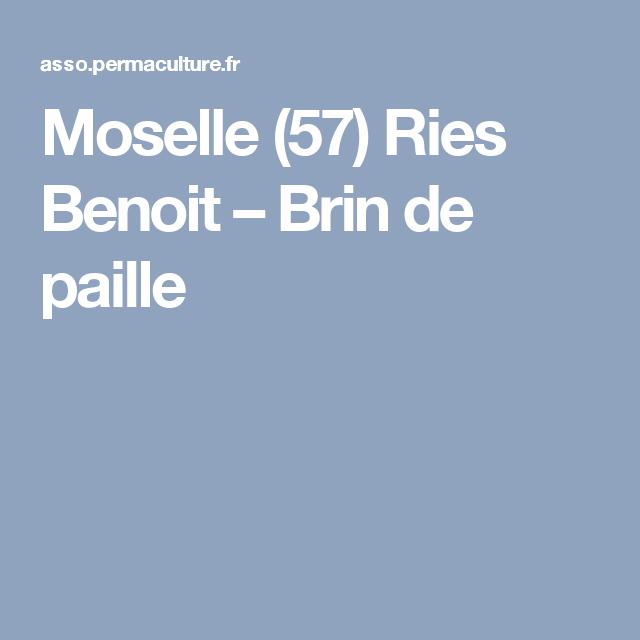 Moselle (57) Ries Benoit – Brin de paille
