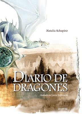 Libro Diario De Dragones