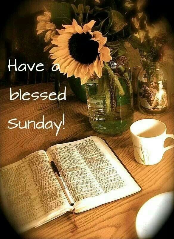Be blessed good morning pinterest blessings sunday quotes be blessed m4hsunfo