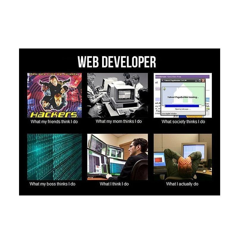 Web #Developer    What my friends, mom, society, boss and I - system programmer job description