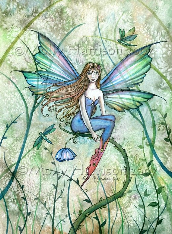 Molly Harrison Fairy in the Vines