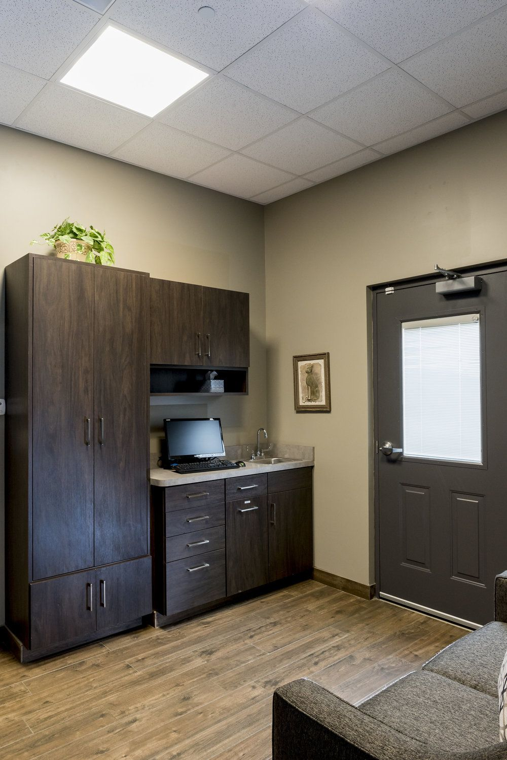 Medical exam room, animal care exam room Clinic design