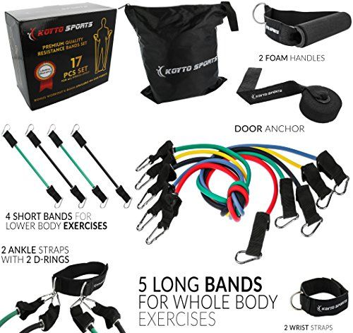 17 pieces Set - Resistance Bands Set of 5 Long Exercise Bands and 4 Short Ankle Bands with Door Anchor, 2 Wrist Straps, 2 Ankle Straps and E-book Manual