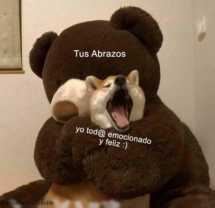 Pin De Jessica E En Funny Amor Animales Frases Frases Perronas Memes Divertidos