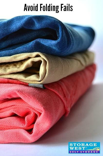 Bed Bugs In Clothes - BED DECOR