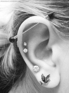 Industrial Piercing Both Ears Google Search Piercings