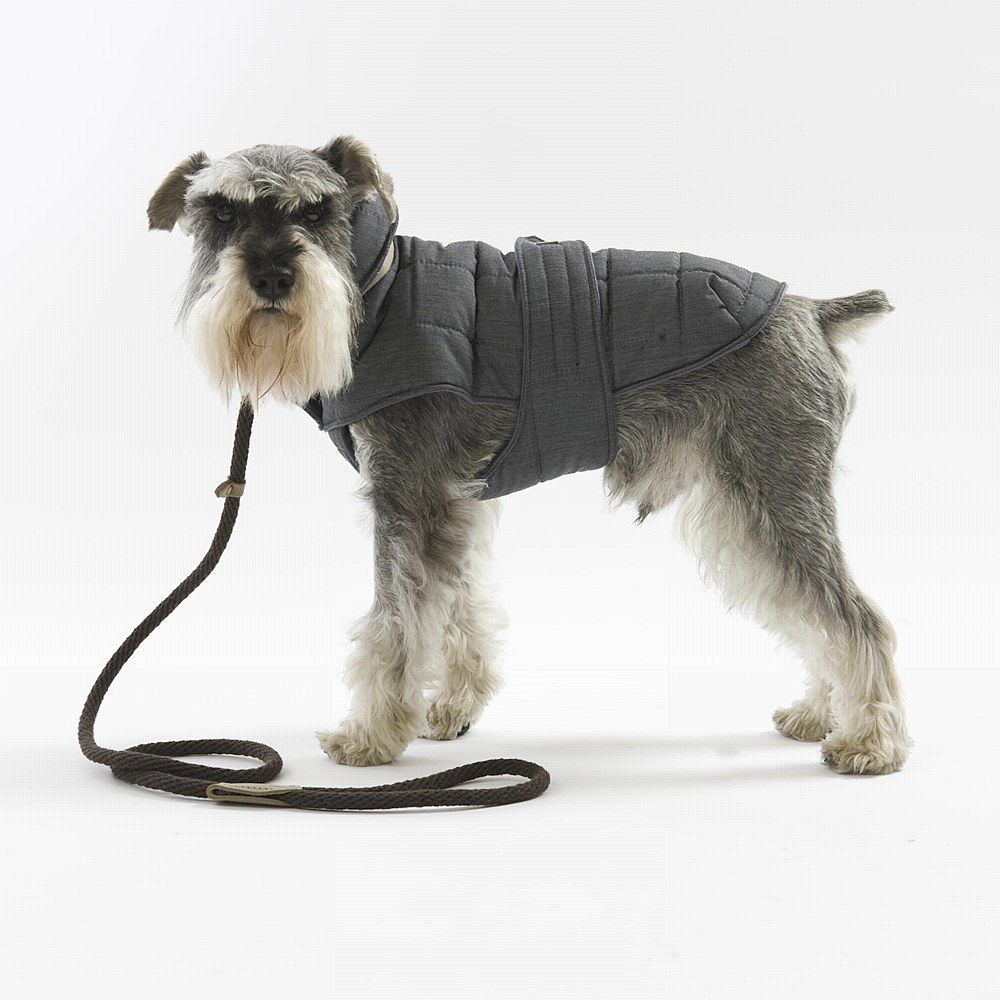The Top 6 Best Winter Dog Coats This Season Http Prettyfluffy Com Trends Shopping Latest Trends Top 6 Winter Coats For Dog Coats Dog Winter Coat Winter Dog [ 1000 x 1000 Pixel ]