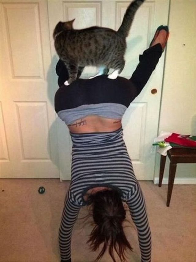 crazy-pets-and-their-crazy-owners-41-pics_3