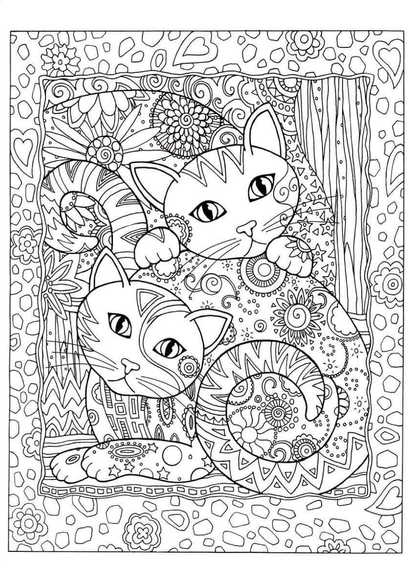 Gatos para Colorir Cats amp Dogs