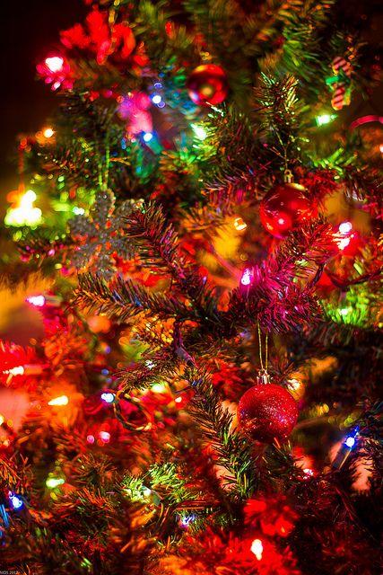 Christmas Lights Christmas 3 Christmas Christmas