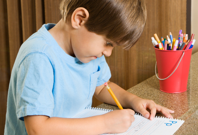16 Public School vs Homeschool Pros and Cons (With images