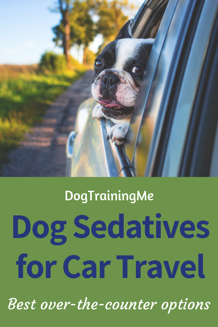 Over the Counter Dog Sedative for Car Travel | Dog Training