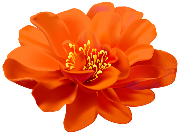Flower Orange Transparent Png Clip Art Image Flower Clipart Digital Flowers Flowers