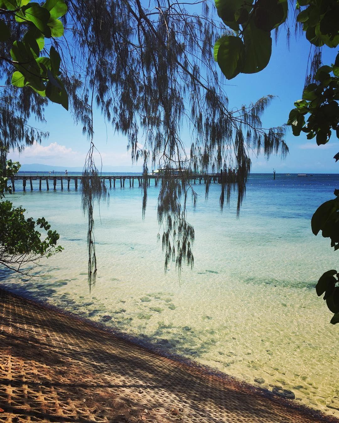 영국 #BBC선정 죽기전에 꼭 가봐야할 #세계여행지 2위 #호주대산호보초 #삼년째 매일보는중  #lucky #heavenonearth #greenisland #queensland #australia  #travel #holiday #greatbarrierreef #greenislandresort #greatadventure #island #work #trip #sea #coral #tropical #에메랄드빛바다 #호주 #그린섬 #여행 #여유 #퇴근풍경 #바다 by jennanarama http://ift.tt/1UokkV2