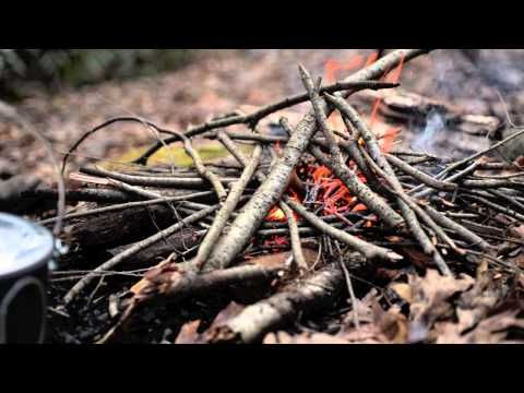 ▶ Another Day in the Woods - YouTube