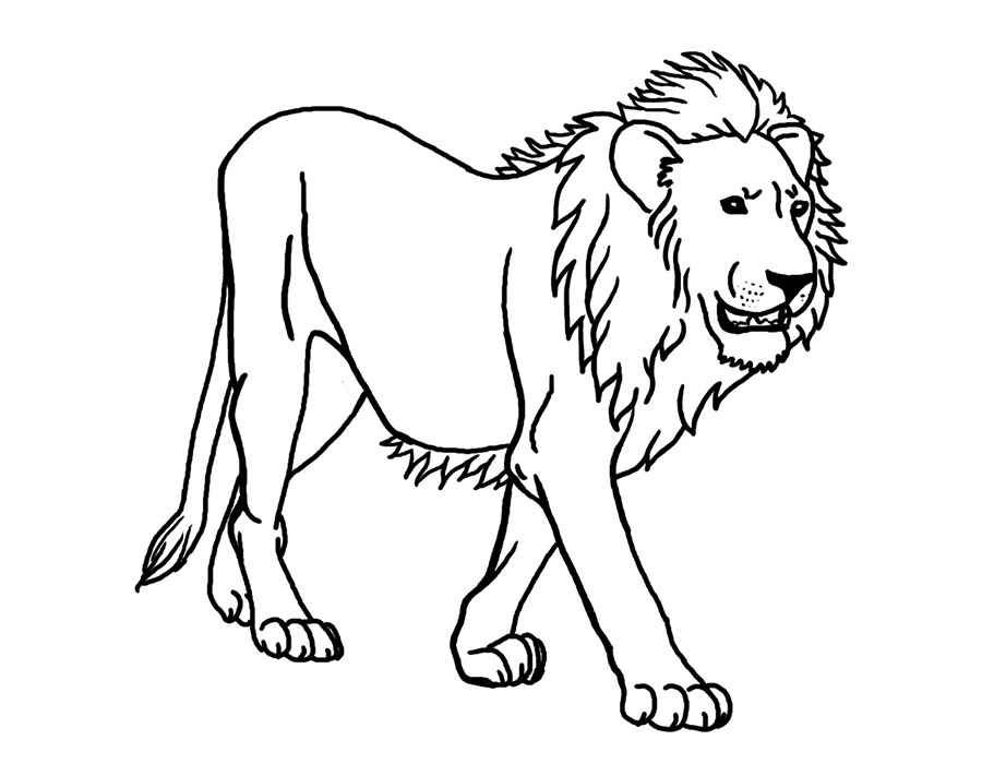 It is a graphic of Lion Printable within mask