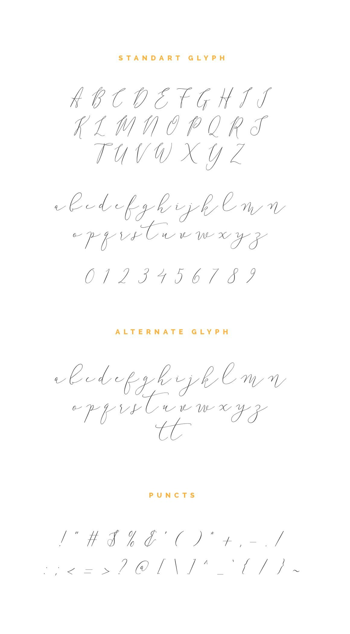 Anter Script