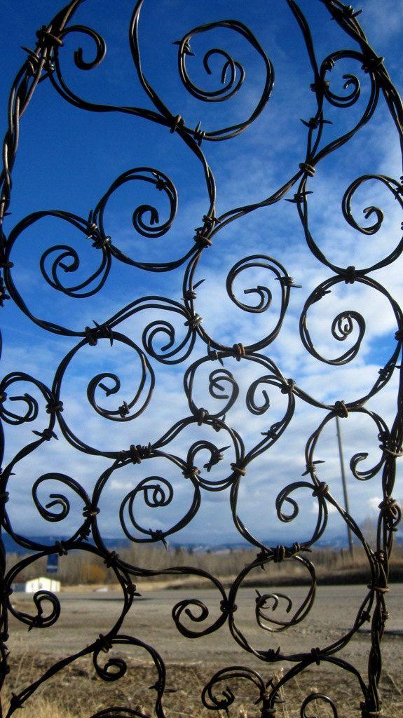 Chicken wire trellis | Design | Pinterest | Wire trellis, Chicken ...