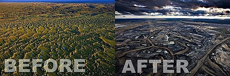 deforestation before and after amazon rainforest - Google ...