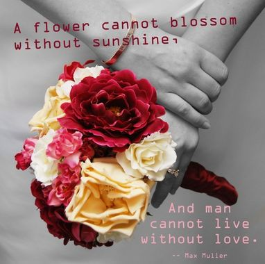 A Flower Cannot Blossom Without Sunshine, And A Man Cannot Live Without Love.