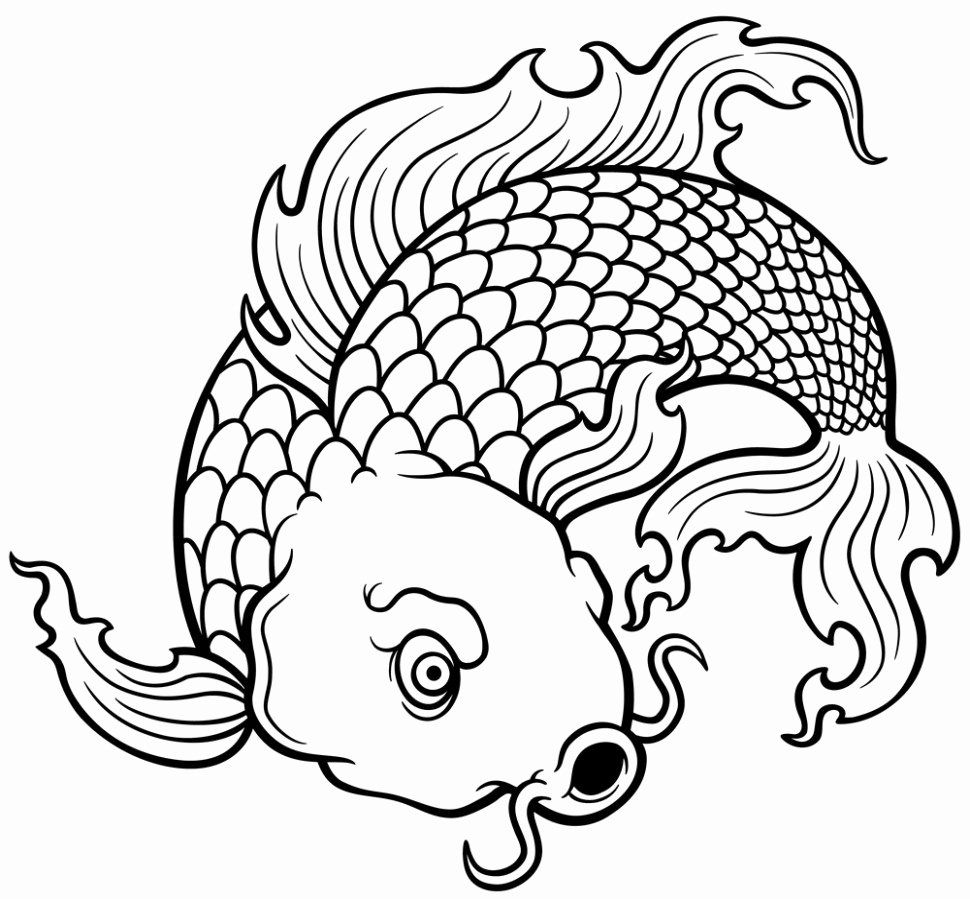 Best Human Body Drawing Book Fresh Japanese Tattoo Coloring Book Great Tattoo Coloring Book Pdf Tattoo Coloring Book Fish Coloring Page Tree Tattoo Color
