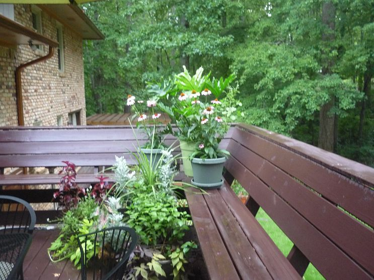 outdoor kitchen deck herb garden after lying in the gardens or soaking in the hot tub its on outdoor kitchen herb garden id=30727
