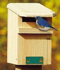 Conservation Sparrow Resistant Bluebird House