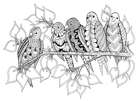 Friendly Birds Card a Pen and Ink Blank by VermontGreetingCards, $3.00