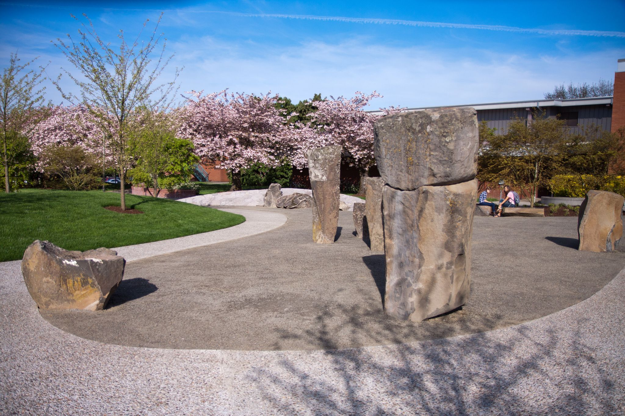 Cherry Trees And Japanese Friendship Garden Cherry Tree Garden Tree