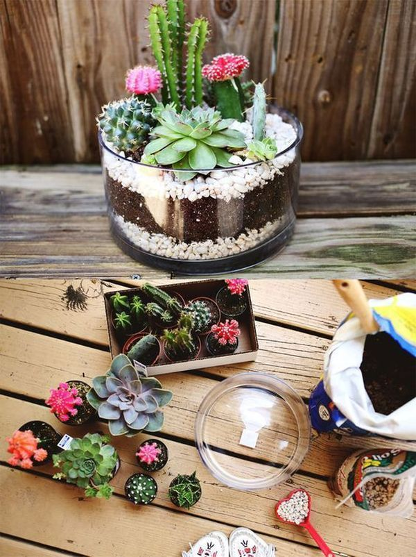 Photo of Small garden in a glass bowl – arrangement ideas with succulents