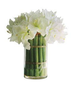 white amaryllis arrangement