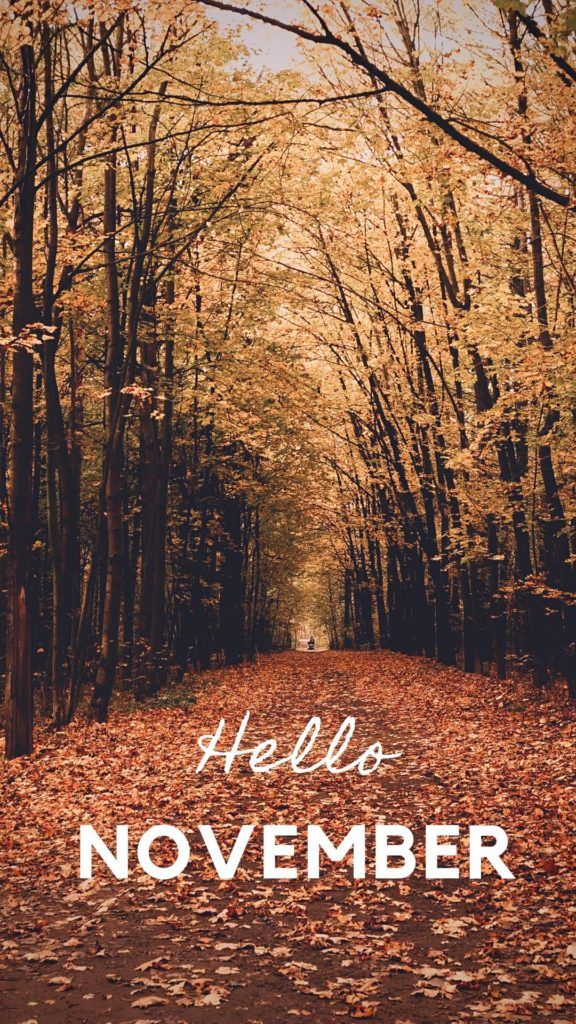 Fall Wallpaper for Your Phone Achtergronden, Foto