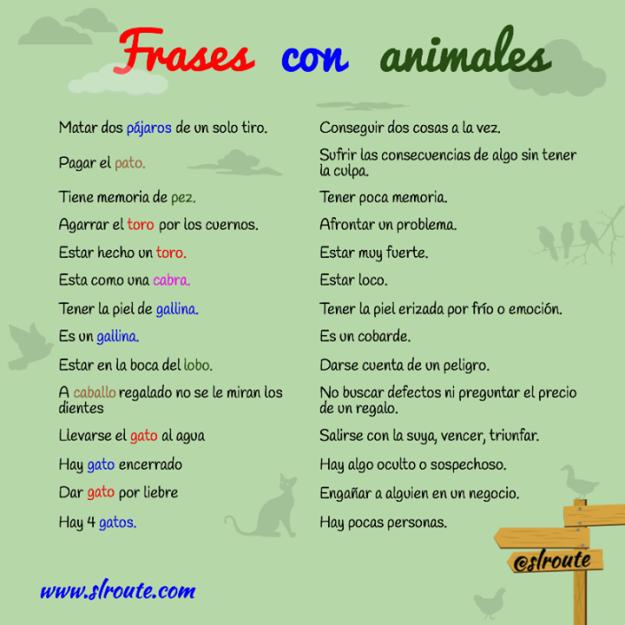 Frases Con Animales Y Su Significado Expresiones En Español Dichos En Español Aprender Español