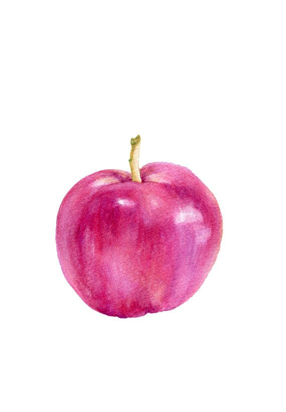 Pink Apple - ORIGINAL Painting (Fruit Illustration ...