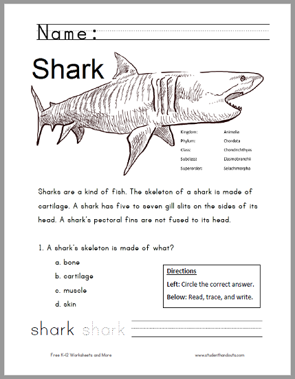 Free Printable Shark Worksheet For Grades 1 3 Kids Read The Informative Text Answer A Multiple Choice Question Pract Shark Activities Sharks For Kids Shark