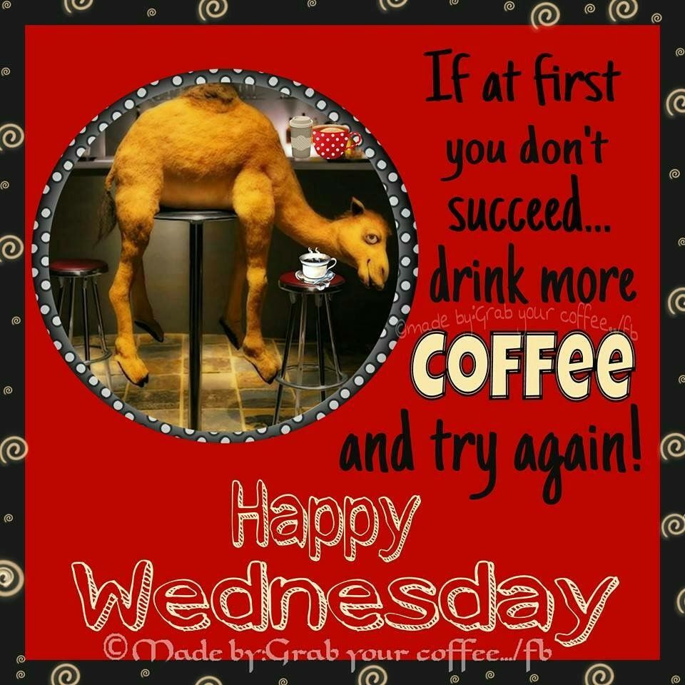 Wednesday Coffee With Images Good Morning Quotes Funny Good