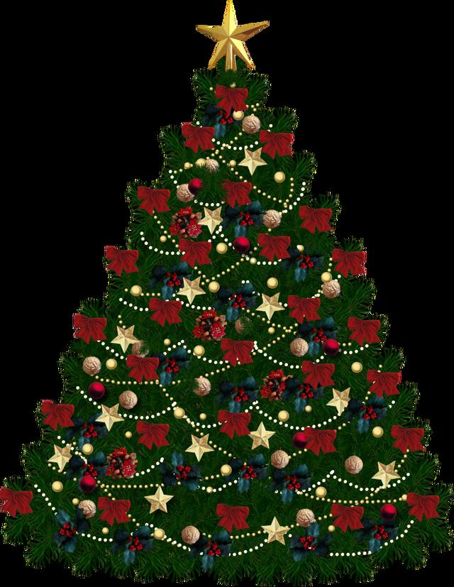 Christmas Tree Transparent Background Google Search Xmas